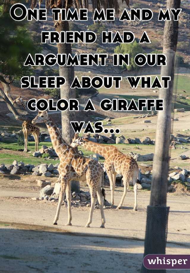 One time me and my friend had a argument in our sleep about what color a giraffe was...