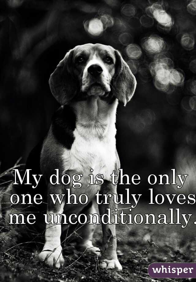 My dog is the only one who truly loves me unconditionally.