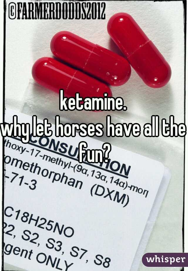 ketamine. why let horses have all the fun?