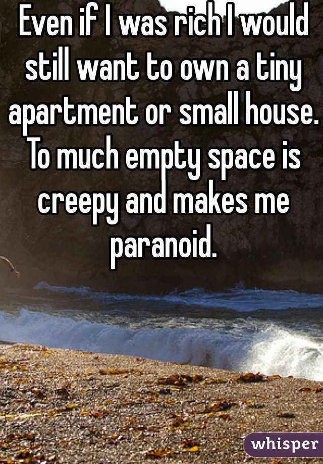 Even if I was rich I would still want to own a tiny apartment or small house. To much empty space is creepy and makes me paranoid.