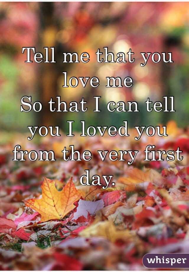 Tell me that you love me So that I can tell you I loved you from the very first day.