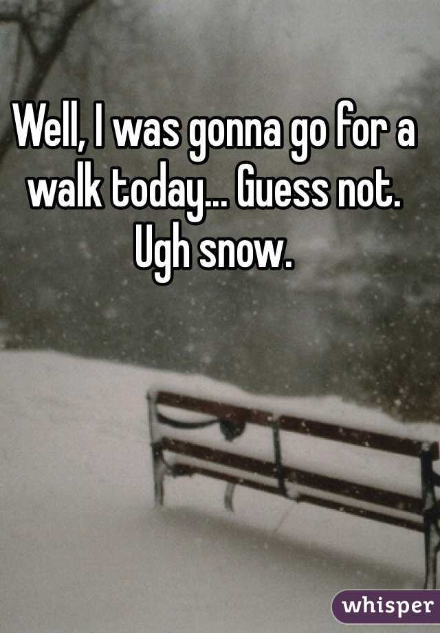 Well, I was gonna go for a walk today... Guess not. Ugh snow.