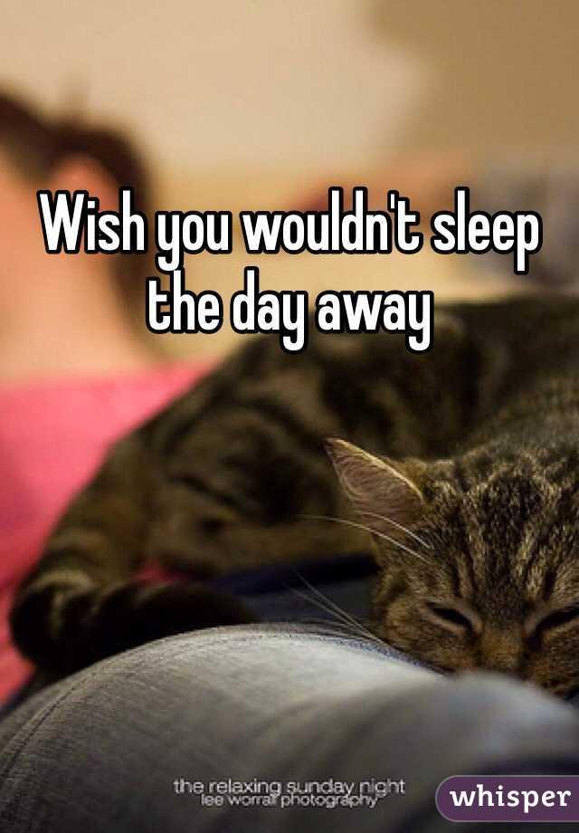 Wish you wouldn't sleep the day away