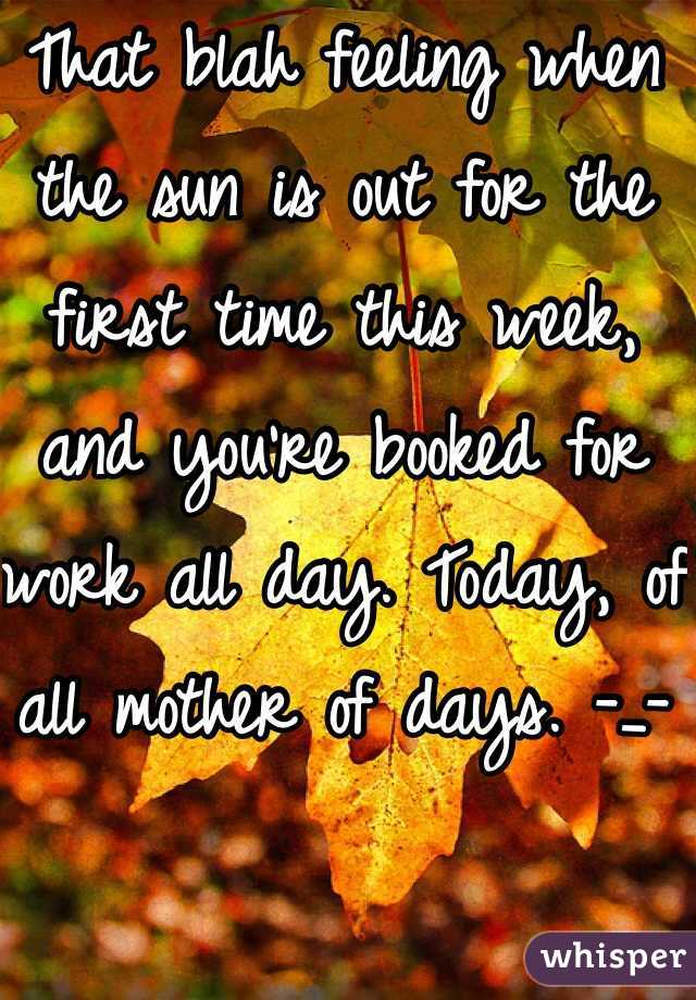 That blah feeling when the sun is out for the first time this week, and you're booked for work all day. Today, of all mother of days. -_-