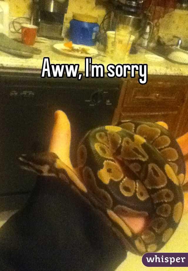 Aww, I'm sorry