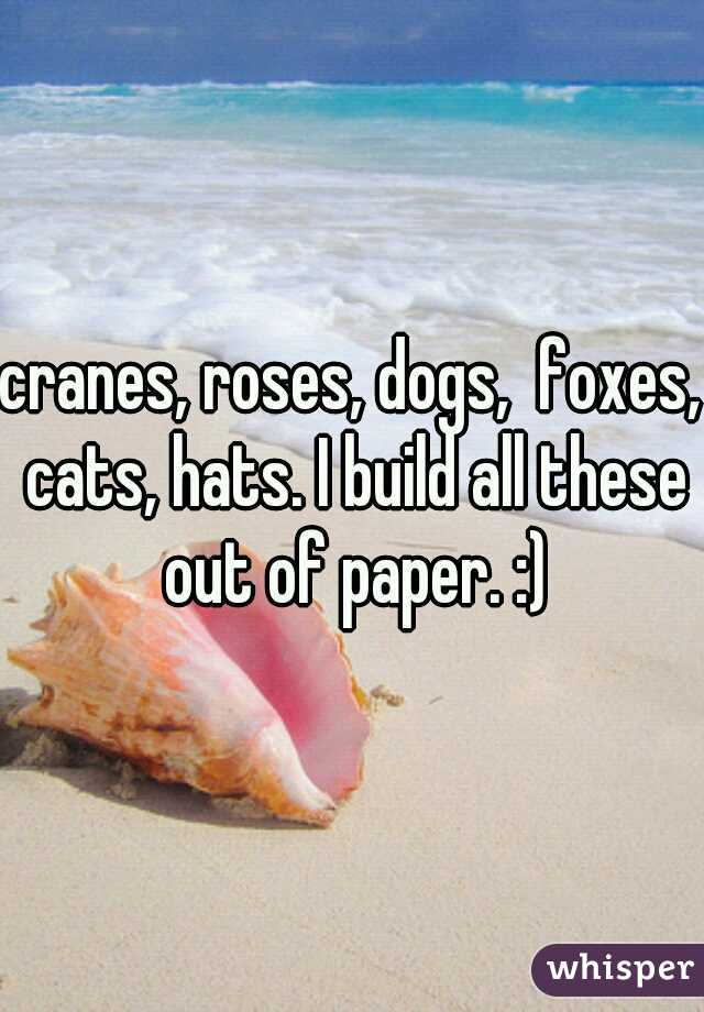cranes, roses, dogs,  foxes, cats, hats. I build all these out of paper. :)