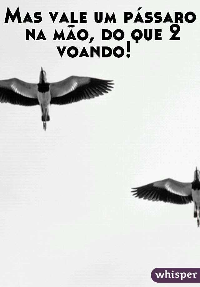 Mas vale um pássaro na mão, do que 2 voando!