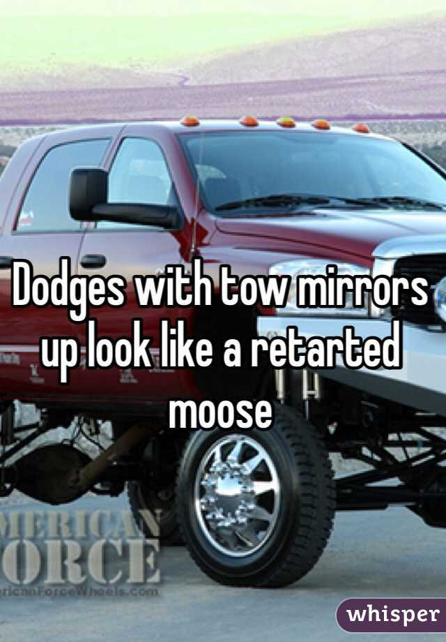 Dodges with tow mirrors up look like a retarted moose