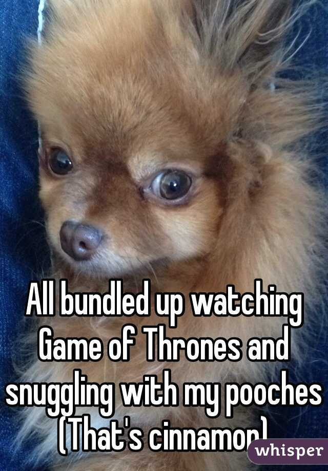 All bundled up watching Game of Thrones and snuggling with my pooches (That's cinnamon)