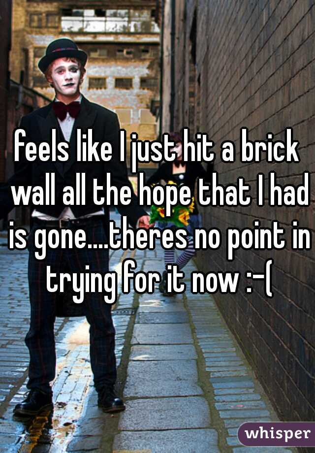 feels like I just hit a brick wall all the hope that I had is gone....theres no point in trying for it now :-(