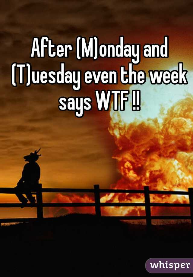 After (M)onday and (T)uesday even the week says WTF !!