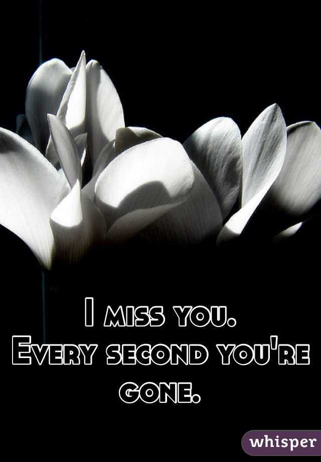 I miss you.  Every second you're gone.