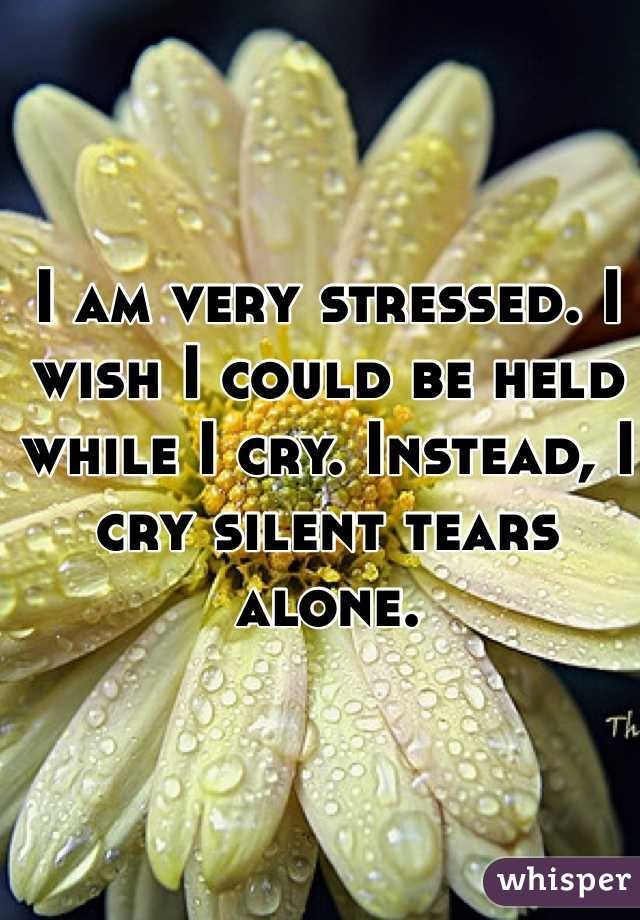 I am very stressed. I wish I could be held while I cry. Instead, I cry silent tears alone.
