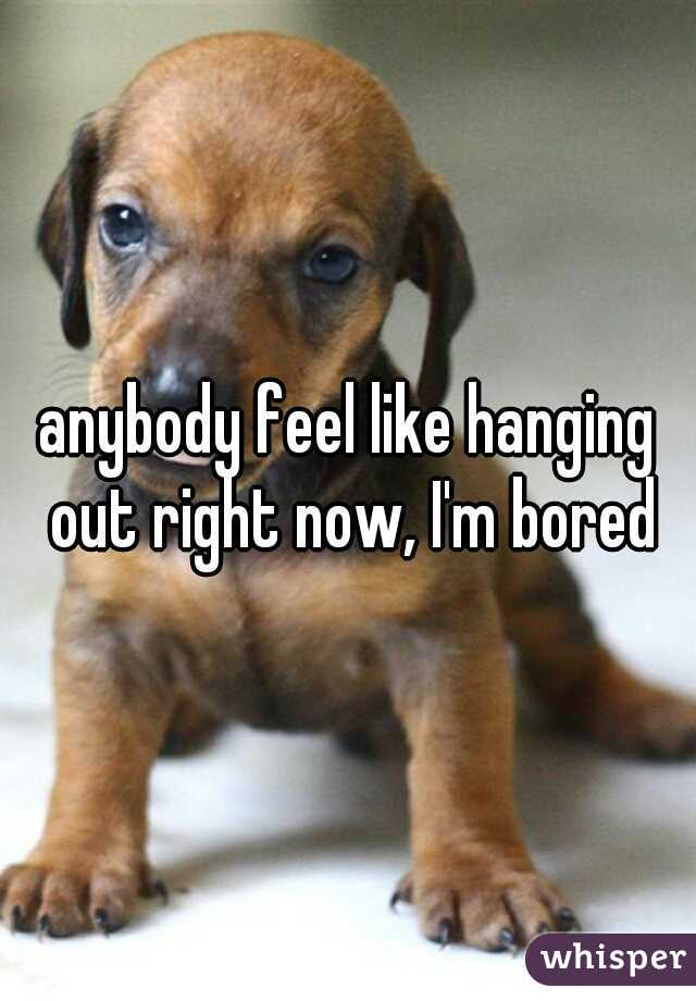 anybody feel like hanging out right now, I'm bored