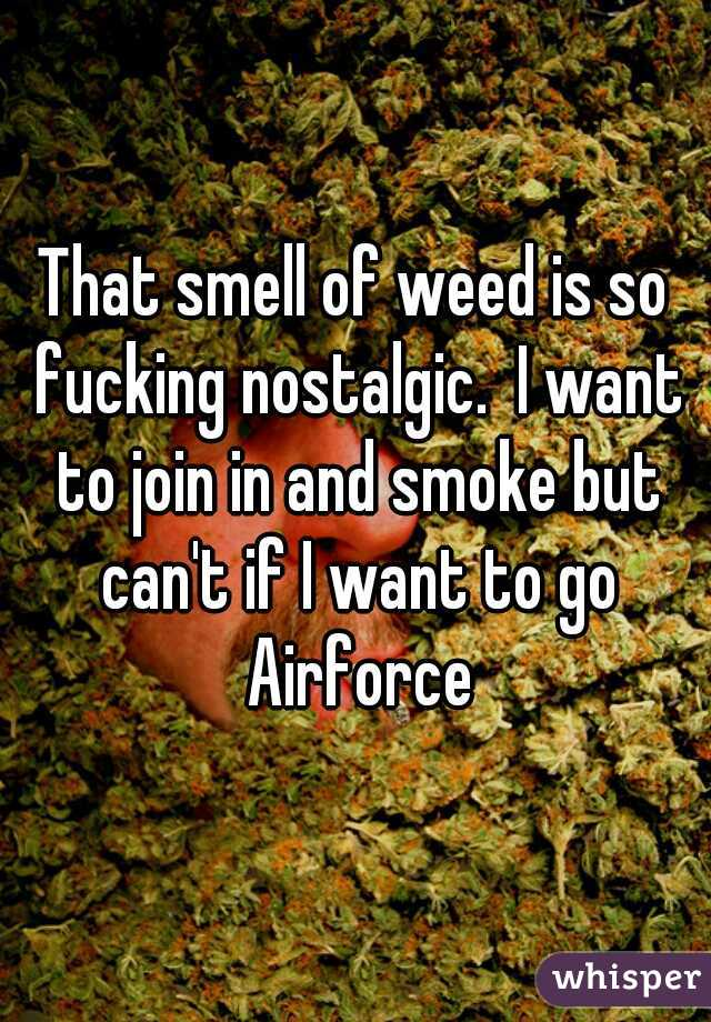 That smell of weed is so fucking nostalgic.  I want to join in and smoke but can't if I want to go Airforce