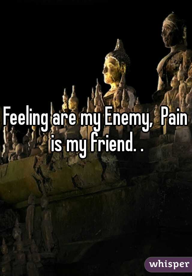 Feeling are my Enemy,  Pain is my friend. .