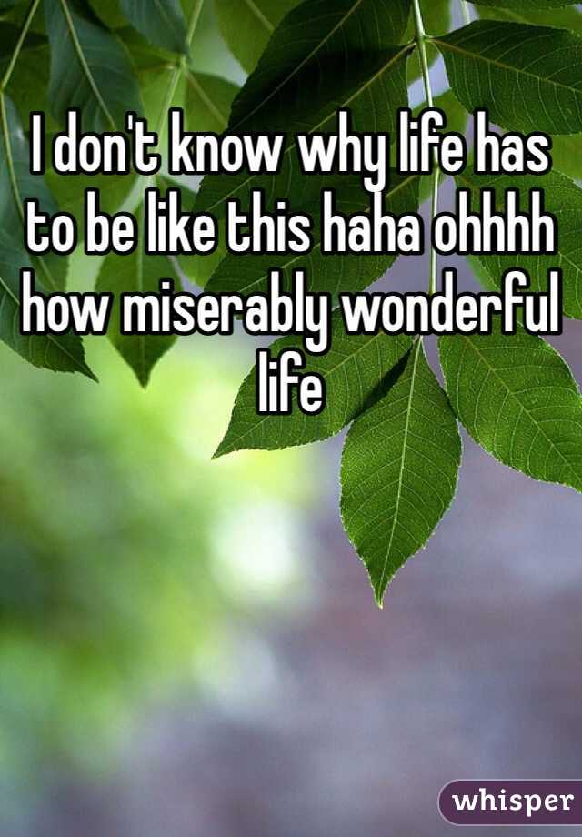 I don't know why life has to be like this haha ohhhh how miserably wonderful life