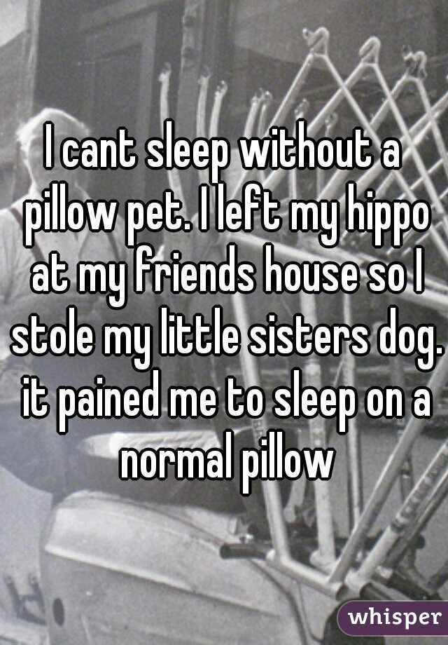 I cant sleep without a pillow pet. I left my hippo at my friends house so I stole my little sisters dog. it pained me to sleep on a normal pillow