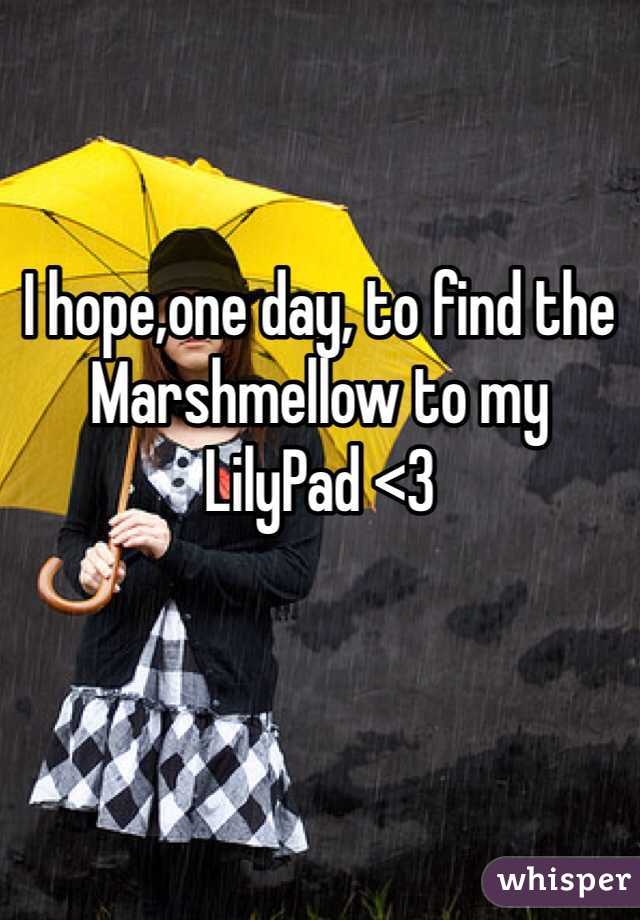 I hope,one day, to find the Marshmellow to my LilyPad <3