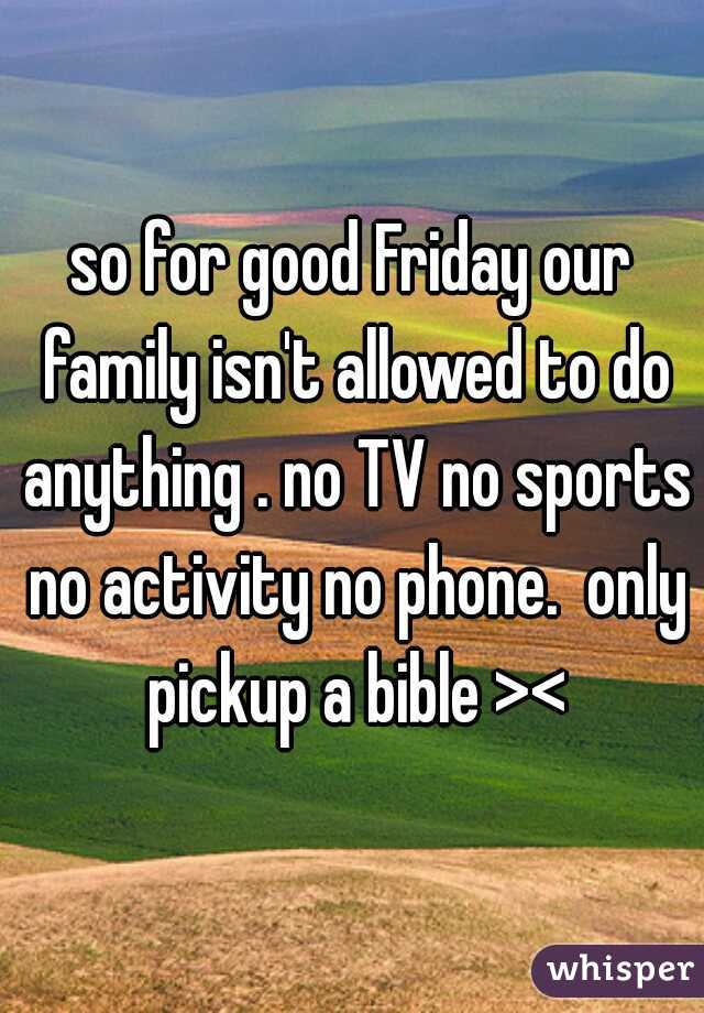 so for good Friday our family isn't allowed to do anything . no TV no sports no activity no phone.  only pickup a bible ><