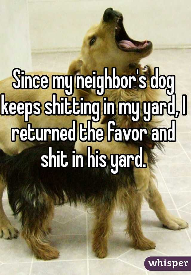 Since my neighbor's dog keeps shitting in my yard, I returned the favor and shit in his yard.