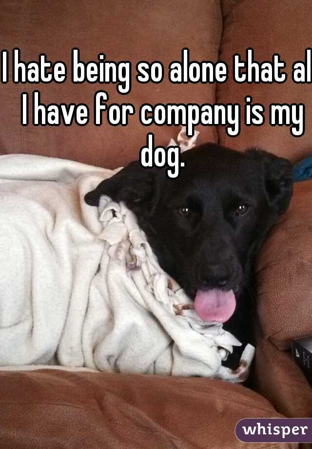 I hate being so alone that all I have for company is my dog.