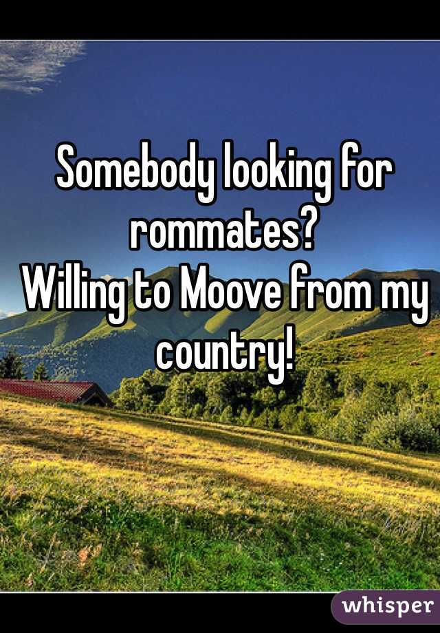 Somebody looking for rommates? Willing to Moove from my country!