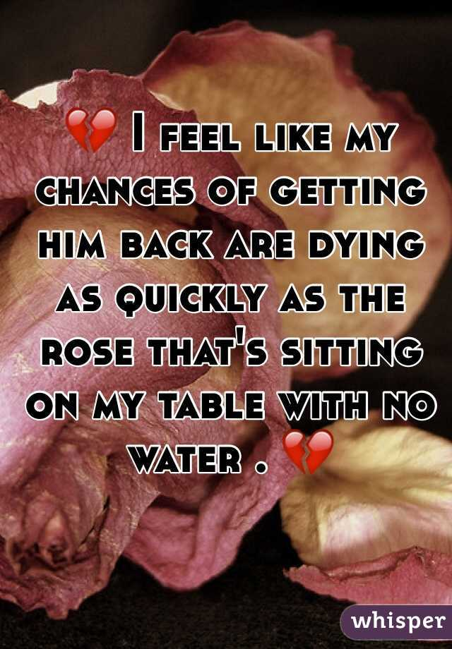 💔 I feel like my chances of getting him back are dying as quickly as the rose that's sitting on my table with no water . 💔