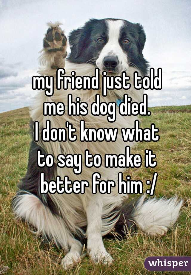 my friend just told  me his dog died.  I don't know what  to say to make it  better for him :/