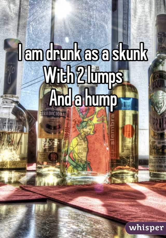 I am drunk as a skunk With 2 lumps  And a hump