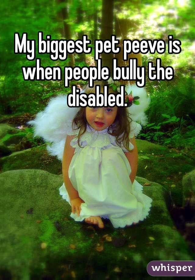 My biggest pet peeve is when people bully the disabled.