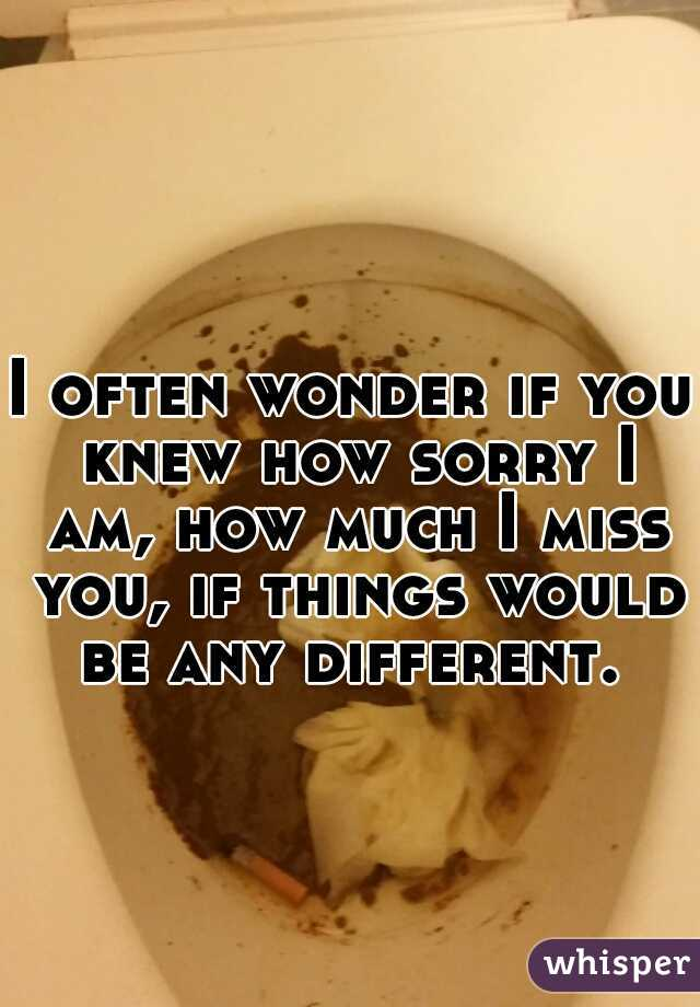 I often wonder if you knew how sorry I am, how much I miss you, if things would be any different.