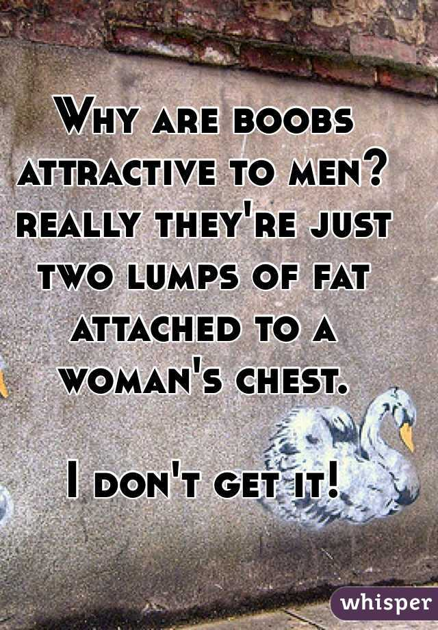Why are boobs attractive to men? really they're just two lumps of fat attached to a woman's chest.  I don't get it!