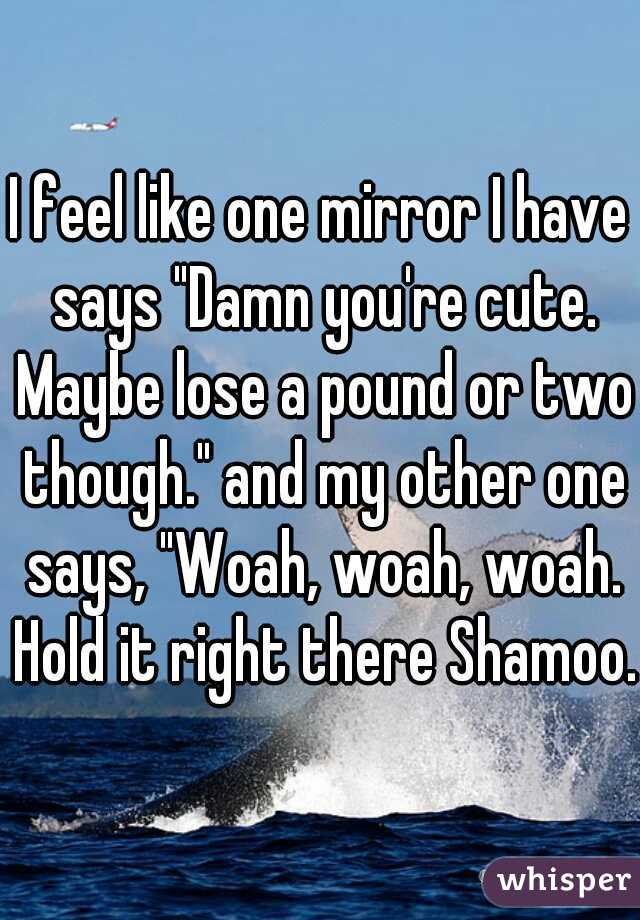 """I feel like one mirror I have says """"Damn you're cute. Maybe lose a pound or two though."""" and my other one says, """"Woah, woah, woah. Hold it right there Shamoo."""""""