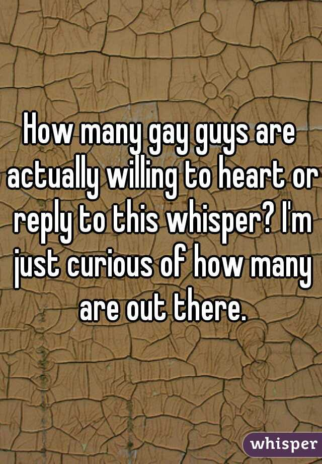 How many gay guys are actually willing to heart or reply to this whisper? I'm just curious of how many are out there.