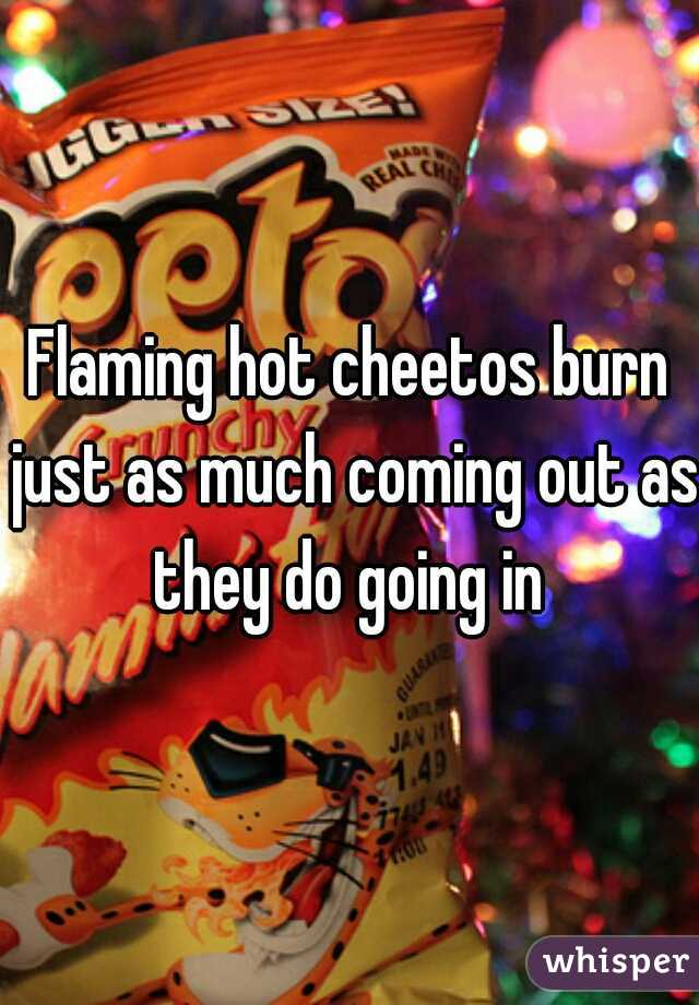 Flaming hot cheetos burn just as much coming out as they do going in