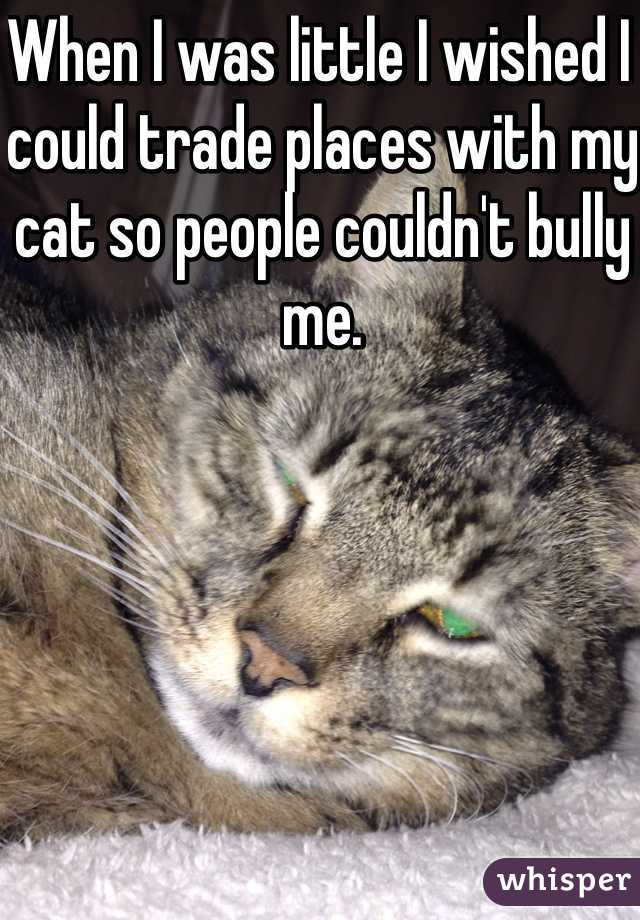 When I was little I wished I could trade places with my cat so people couldn't bully me.