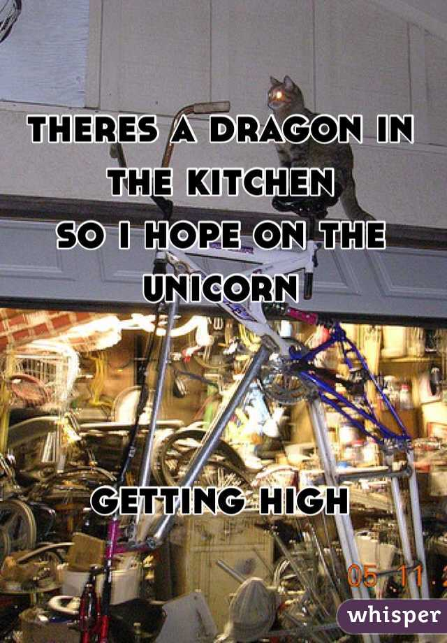 theres a dragon in the kitchen so i hope on the unicorn    getting high
