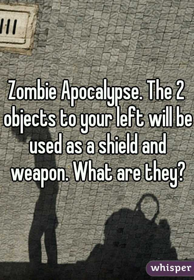 Zombie Apocalypse. The 2 objects to your left will be used as a shield and weapon. What are they?