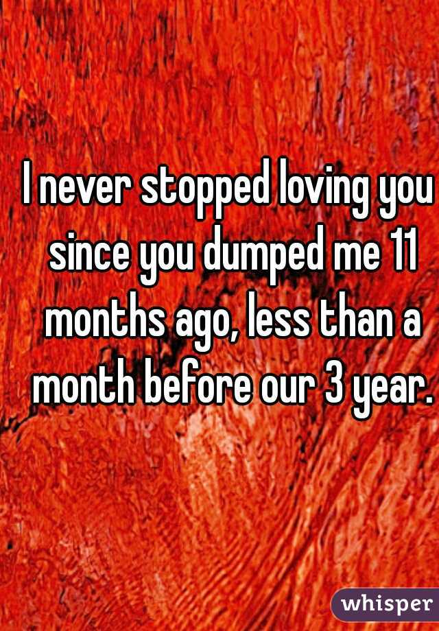 I never stopped loving you since you dumped me 11 months ago, less than a month before our 3 year.