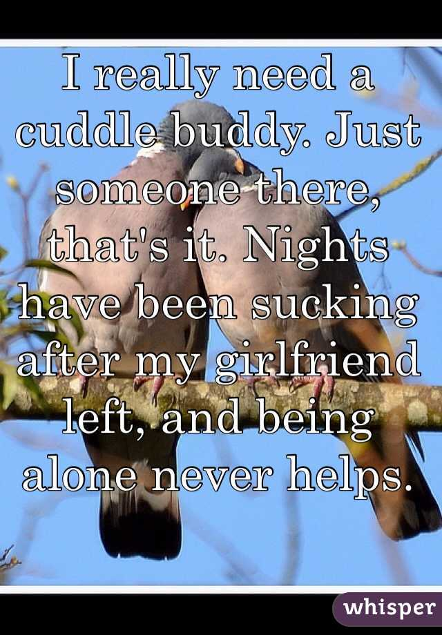 I really need a cuddle buddy. Just someone there, that's it. Nights have been sucking after my girlfriend left, and being alone never helps.