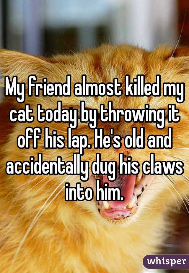 My friend almost killed my cat today by throwing it off his lap. He's old and accidentally dug his claws into him.