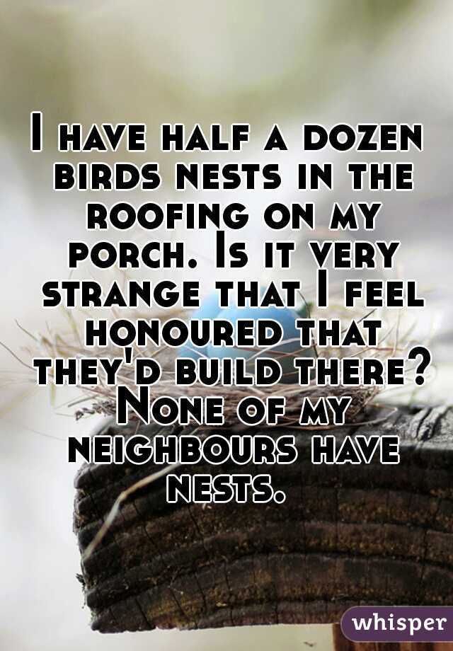 I have half a dozen birds nests in the roofing on my porch. Is it very strange that I feel honoured that they'd build there? None of my neighbours have nests.