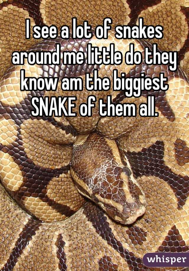 I see a lot of snakes around me little do they know am the biggiest SNAKE of them all.