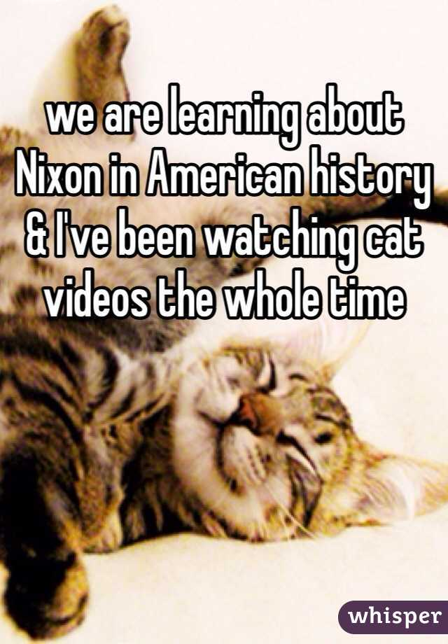 we are learning about Nixon in American history & I've been watching cat videos the whole time