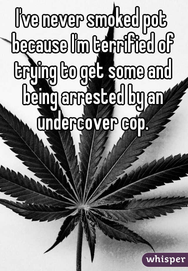 I've never smoked pot because I'm terrified of trying to get some and being arrested by an undercover cop.