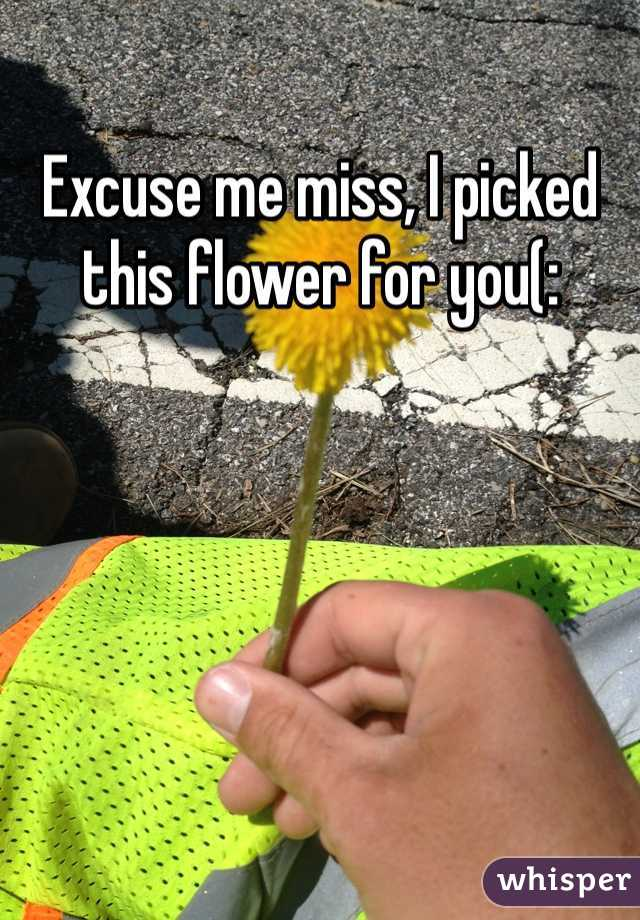 Excuse me miss, I picked this flower for you(: