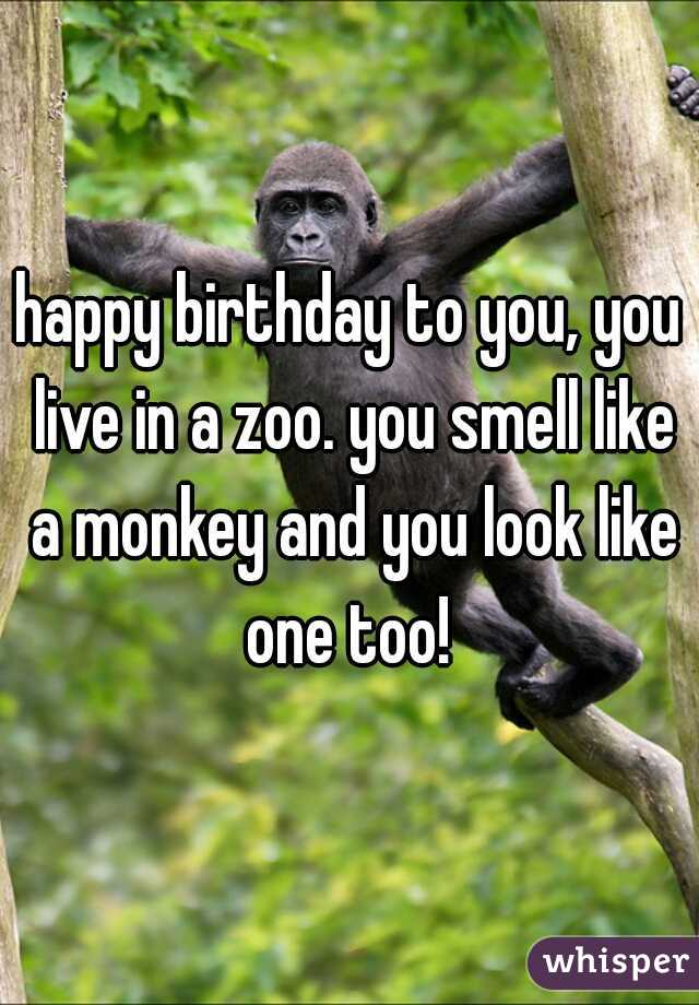 Happy Birthday To You You Live In A Zoo You Smell Like A Monkey