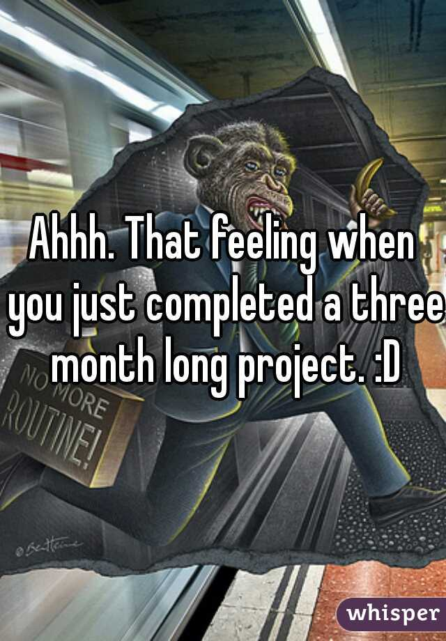 Ahhh. That feeling when you just completed a three month long project. :D