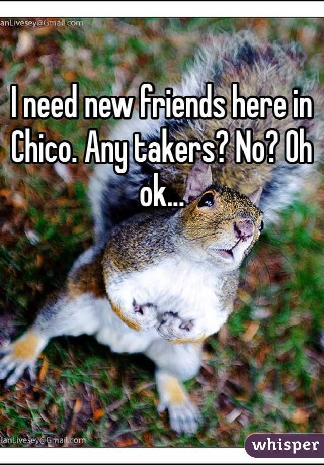 I need new friends here in Chico. Any takers? No? Oh ok...